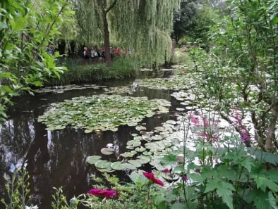 Giverny, France lily pads