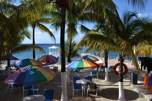 CE Share Caribbean