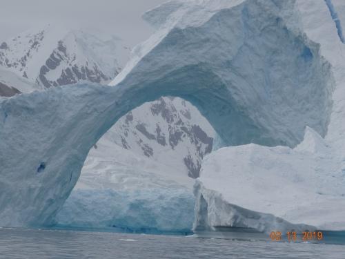 CE Share David F Antarctica 6