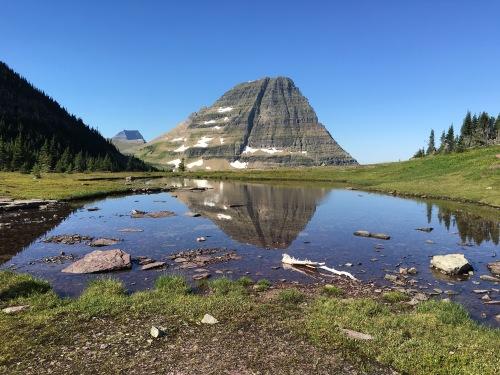 CE Share David M. Glacier NP 2