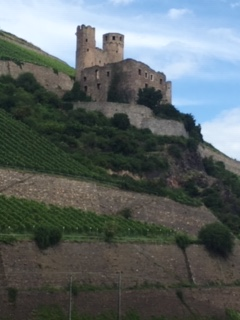 CE Share Janet K Along the Middle Rhine Castle
