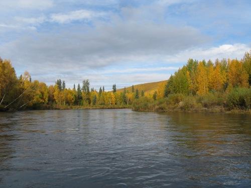 CE Share Pridemore 22 Chena River Fairbanks