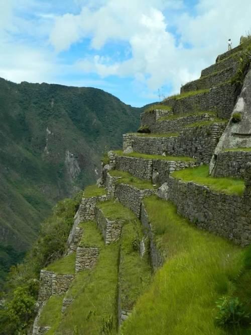 CE Share Don M Machu Picchu 15