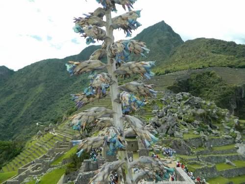 CE Share Don M Machu Picchu 17
