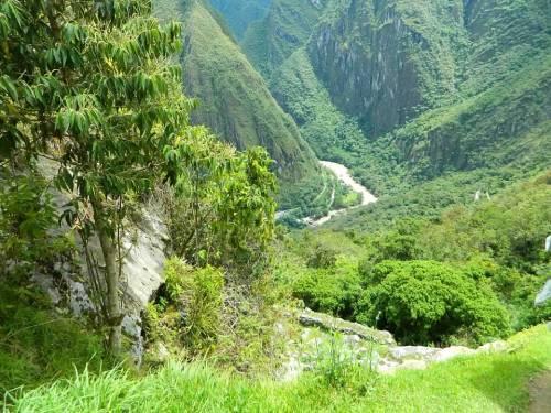 CE Share Don M Machu Picchu 29