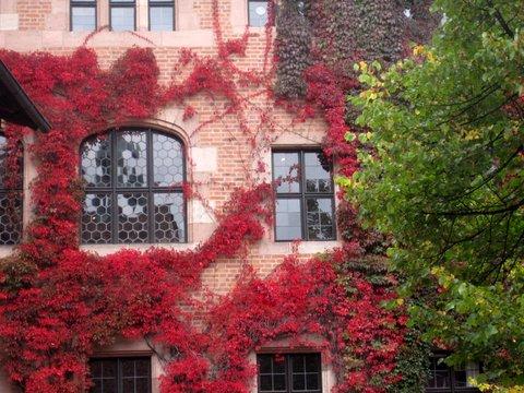 Fall in Nuremberg, Germany