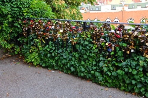 CE Share Susan B Croatia 19 Zagreb - Love locks gate